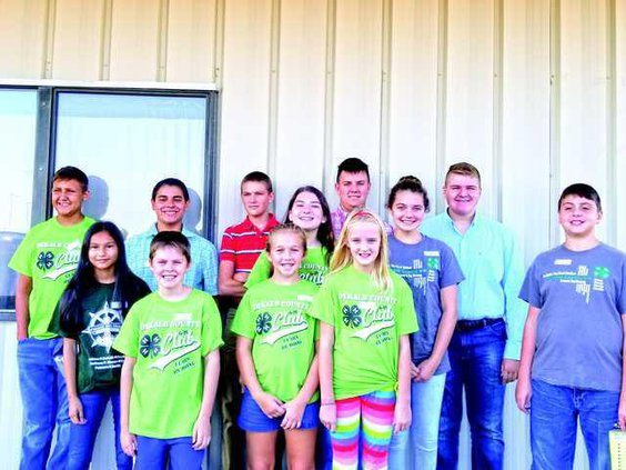 4-H Poultry Team