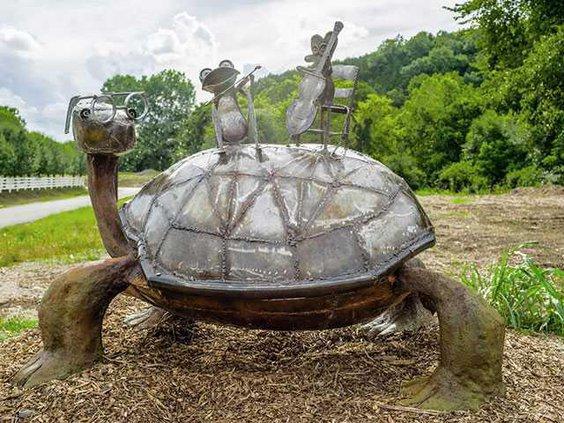 turtleWEB