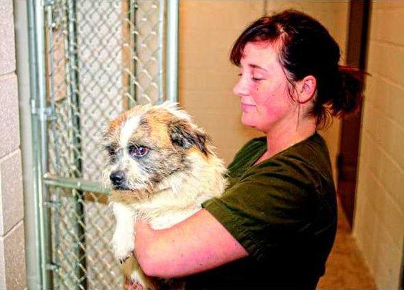 New Animal Shelter 2.JPG