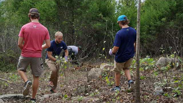 Tenn Tech University Students clear small brush in areas to reveal sceni...