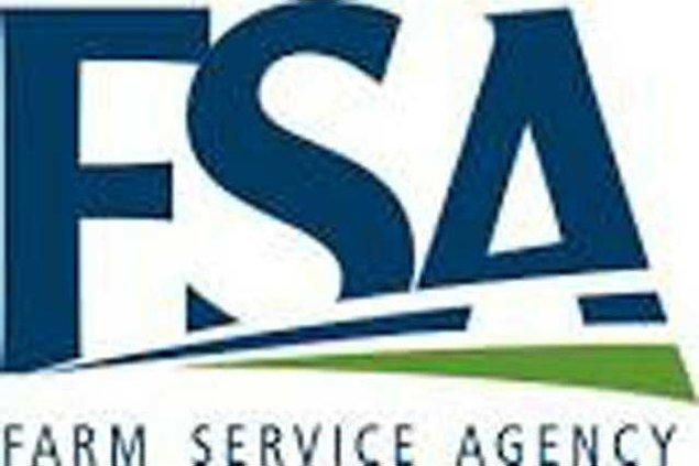 FSA logo w sm