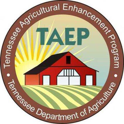 TAEP logo-602x602