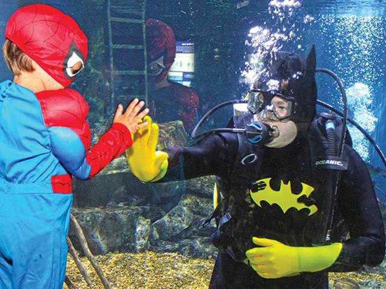 TN-AquariumWEB