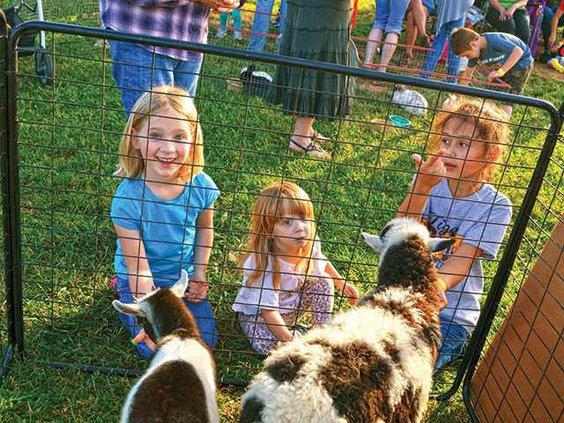 girls-and-goatsWEB