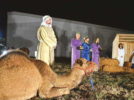 CamelWEB