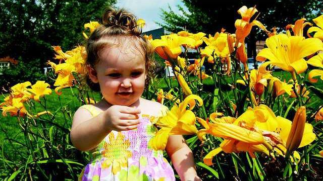 FP3-Flower girl