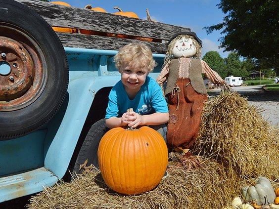 Cedar - pumpkin boy original.jpg