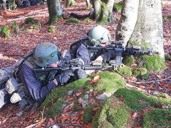 National-Guard---gunsWEB