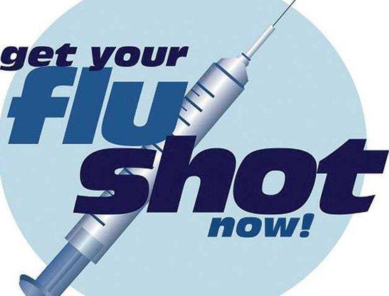 fluWEB