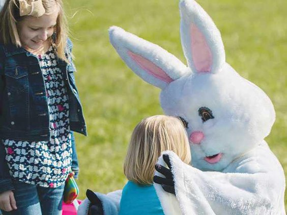 EasterBunWEB