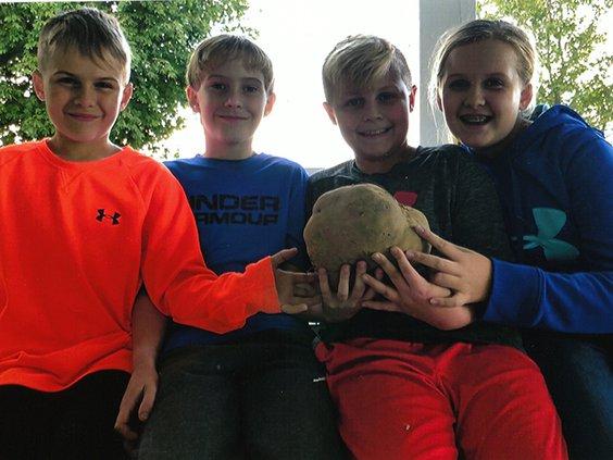 large potato.jpg