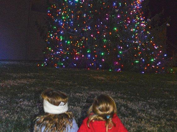 1 Girls looking at tree 1.jpg