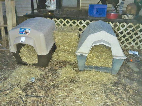 free dog houses.jpg