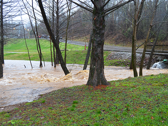Flood-waters.png