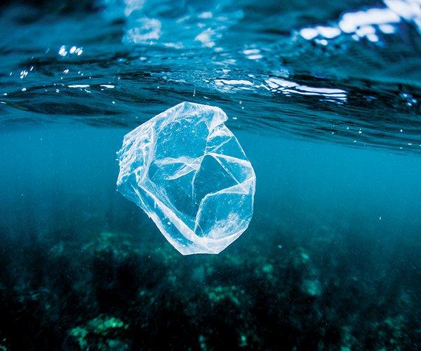 plasticbagpollutionintheocean 2.jpg