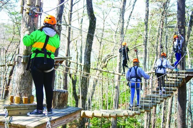 Fall Creek Falls course