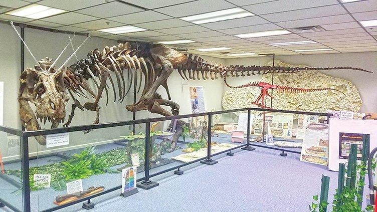 Rotary - T-Rex.jpg
