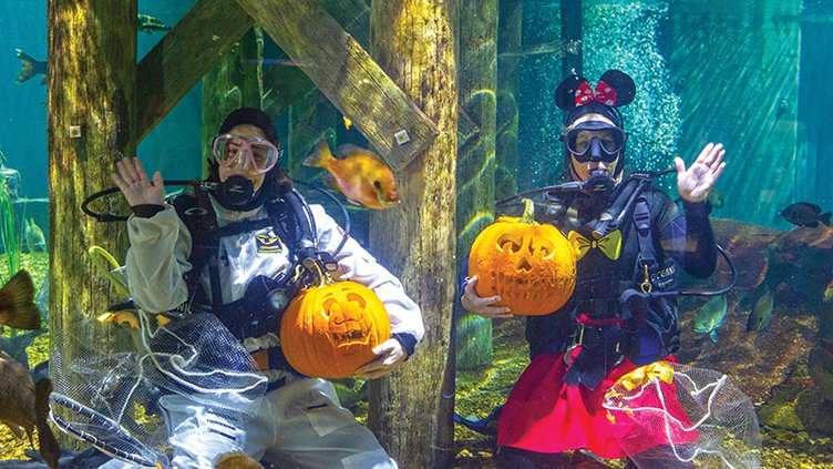 Halloween aquarium.jpg