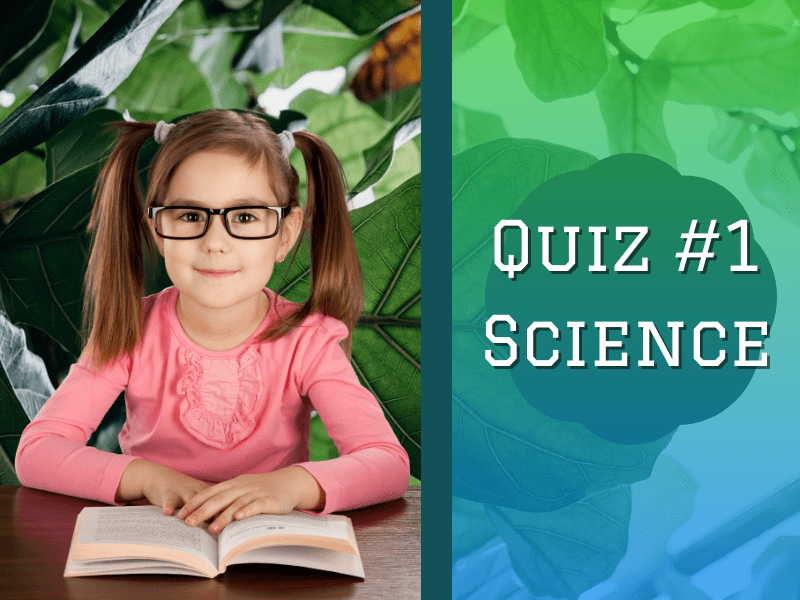 science quiz for kids