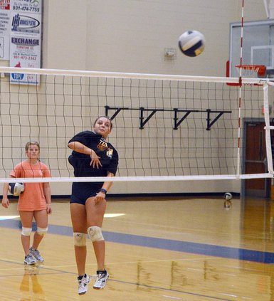 Volleyball - Mea Starkey.jpg