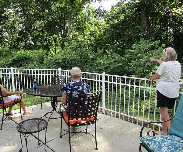 Riverview Terrace view1.jpg