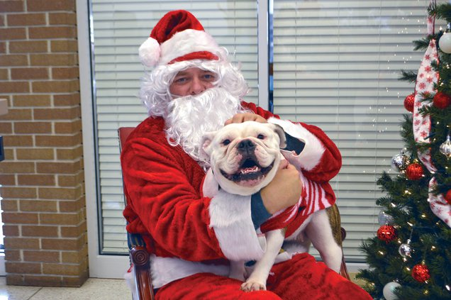 pet pictures with santa, Piper.jpg