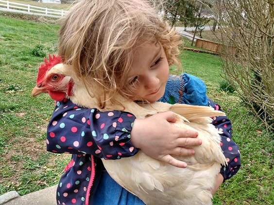 National Pet Day - Marigold owned by Olivia Dasaro.jpg