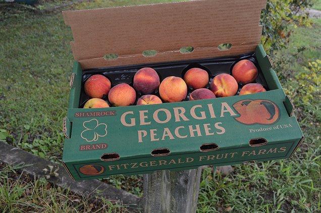 Peach box.jpg