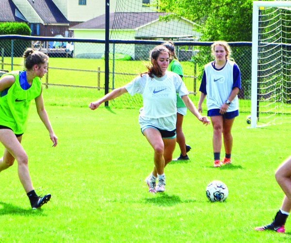 WCHS soccer shines